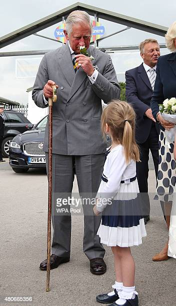 Jessica Fox aged four presents Prince Charles Prince of Wales with a white rose buttonhole as he attends The Great Yorkshire Show on July 14 2015 in...