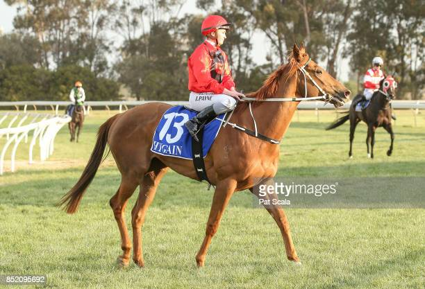 Jessica Payne returns to the mounting yard on Meridian Star after winning Greater Shepparton City Sprint BM64 Handicap at Tatura Racecourse on...