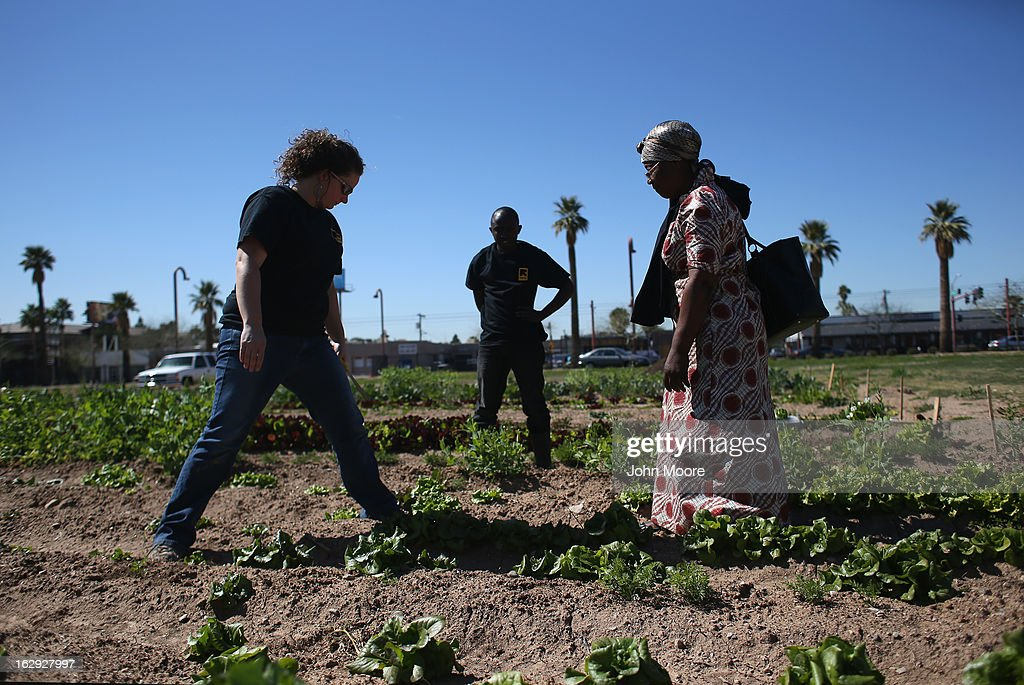 Jessica Woiderski, (L), a farm coordinator for the New Roots urban farm program held by the International Rescue Committee (IRC), advises refugees on March 1, 2013 in Phoenix, Arizona. The program is designed to help refugees, many of whom were farmers in their homeland, integrate into their new lives in America. New Roots, like many federally-funded programs, may be greatly cut back due to federal sequestration cuts. The IRC is a non-profit humanitarian aid organization that aids refugees and survivors of international conflict. They assist new arrivals, many of whom come from refugee camps and war zones, to adjust to American society after being granted refugee status and invited by the U.S. government to live in the United States. The IRC also assists refugees through the immigration and naturalization process to become U.S. citizens.