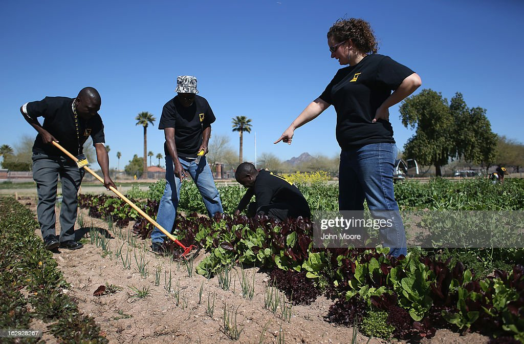 Jessica Woiderski, (R), a farm coordinator for the New Roots urban farm program held by the International Rescue Committee (IRC), advises refugees on March 1, 2013 in Phoenix, Arizona. The program is designed to help refugees, many of whom were farmers in their homeland, integrate into their new lives in America. New Roots, like many federally-funded programs, may be greatly cut back due to federal sequestration cuts. The IRC is a non-profit humanitarian aid organization that aids refugees and survivors of international conflict. They assist new arrivals, many of whom come from refugee camps and war zones, to adjust to American society after being granted refugee status and invited by the U.S. government to live in the United States. The IRC also assists refugees through the immigration and naturalization process to become U.S. citizens.