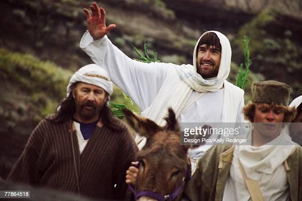 Jesus rides on a colt