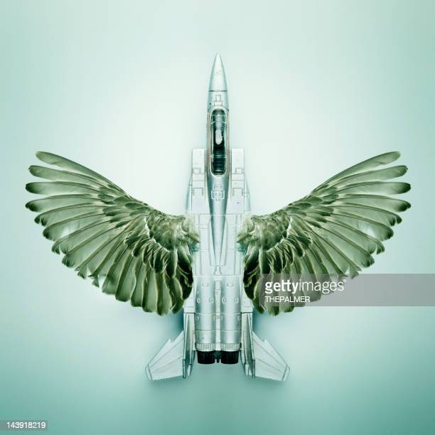 jet fighter with bird wings