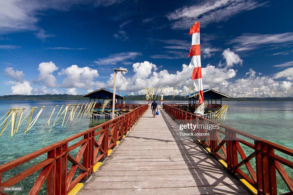 Jetty and Beautiful Island