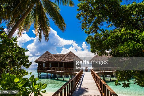 Jetty, beach and jungle - vacation background : Foto de stock