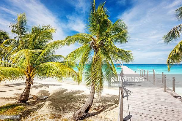 Jetty Blue Lagoon Polynesia