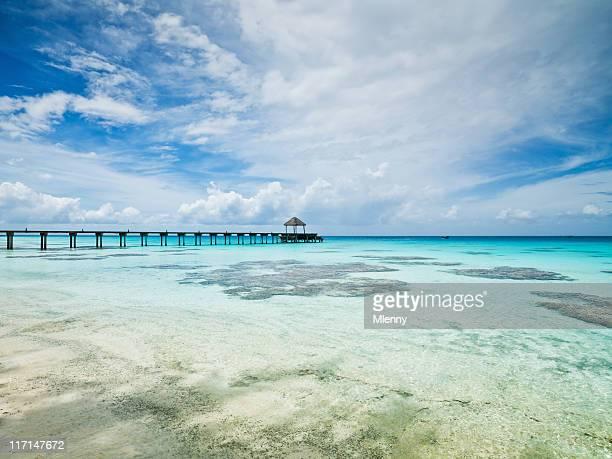 Ponton de Clear océan Pacifique Îles Tuamotu Fakarava Polynésie française