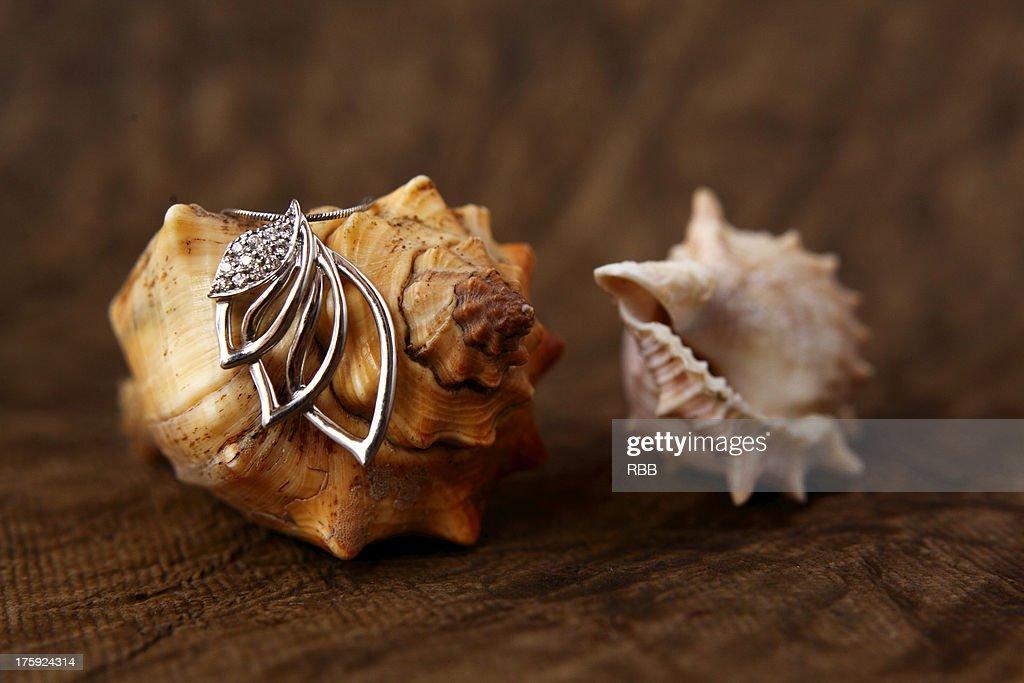 Jewelry : Stock Photo