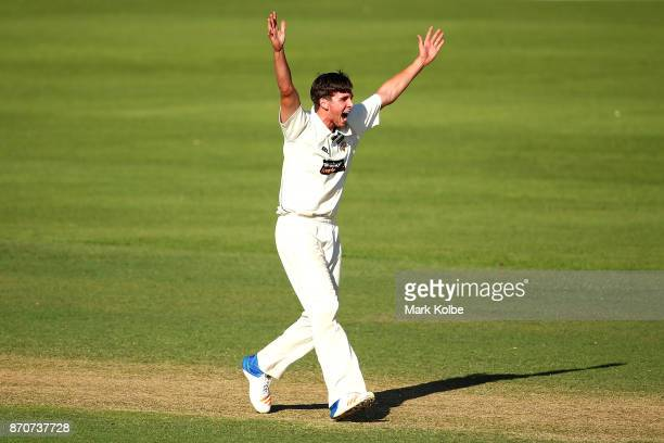 Jhye Richardson of the Warriors appeals unsuccessfully for the wicket of Curtis Patterson of the Blues during day three of the Sheffield Shield match...