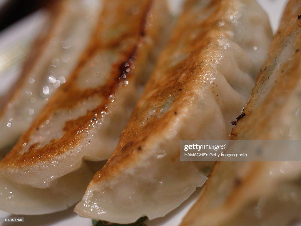 jiaozi dumplings : Stock Photo