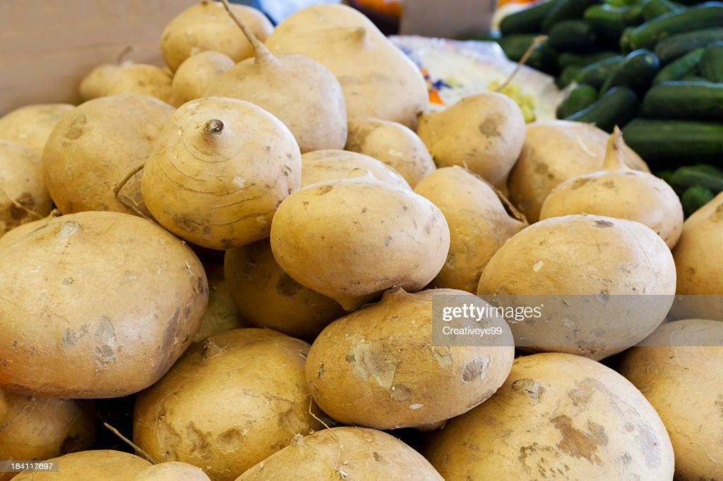 Jicama : Stock Photo