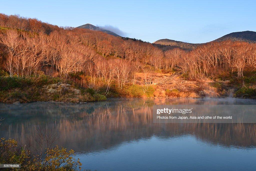 Jigoku-numa (Hell Swamp) in Aomori, Japan