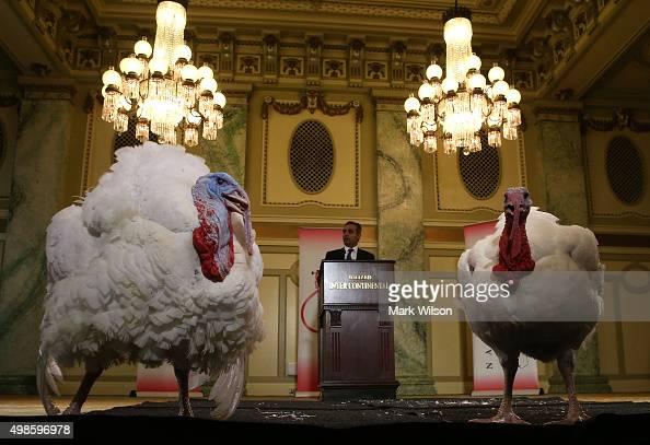 Jihad Douglas chairman of the National Turkey Federation introduces two turkeys during a media availability at the Willard Inter Continental Hotel...