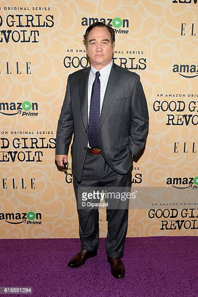 Jim Belushi attends the 'Good Girls Revolt' New York screening at the Joseph Urban Theater at Hearst Tower on October 18 2016 in New York City
