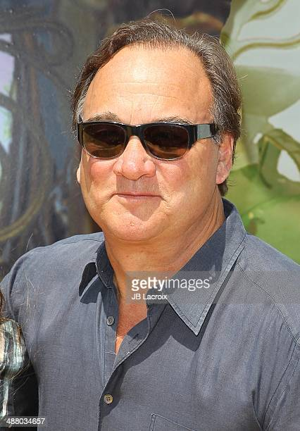 Jim Belushi attends the premiere of 'Legends Of Oz Dorthy's Return' at Regency Village Theatre on May 3 2014 in Westwood California
