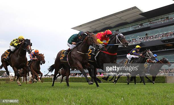 Jim Cassidy rides Dissident to win race 6 The All Aged Stakes during Sydney Racing at Royal Randwick Racecourse on April 18 2015 in Sydney Australia