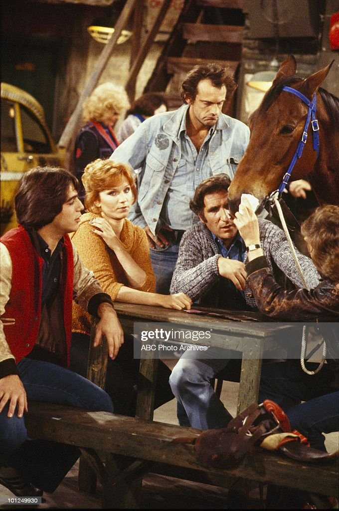 TAXI - 'Jim Gets a Pet' - Airdate December 18, 1979. (Photo by ABC Photo Archives/ABC via Getty Images) TONY