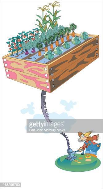 Jim Hummel color illustration of gardener jacking a vegetable garden up into the sky