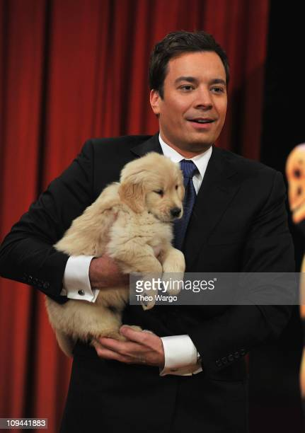 Jimmy Fallon appears on 'Late Night with Jimmy Fallon' at Rockefeller Center on February 25 2011 in New York City