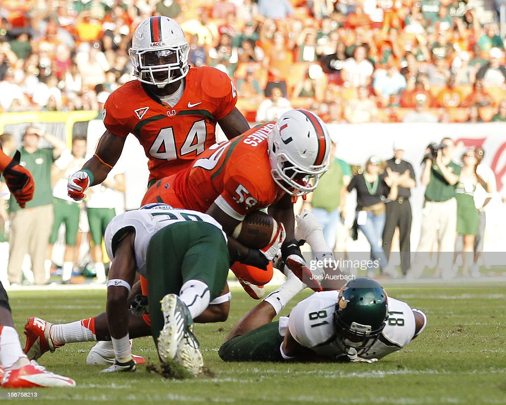 Jimmy Gaines #59 of the Miami Hurricanes recovers a fumble by Andre Davis #81 of the South Florida Bulls on November 17, 2012 at Sun Life Stadium in Miami Gardens, Florida. The Hurricanes defeated the Bulls 40-9.