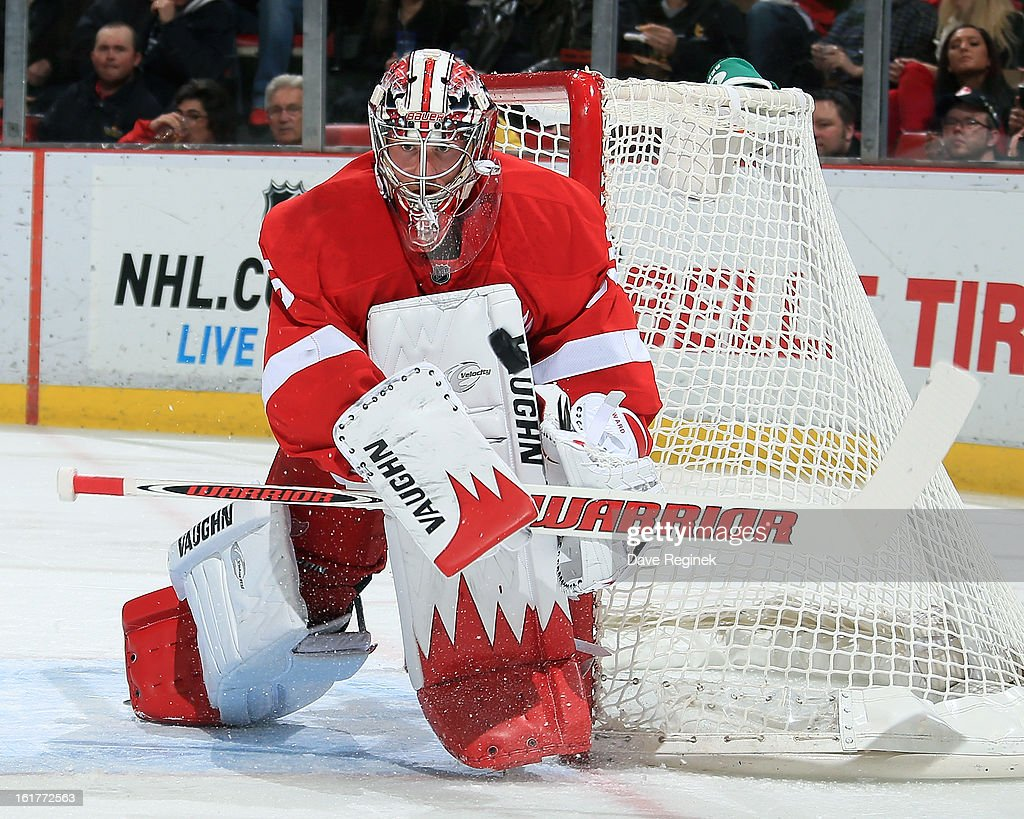 Jimmy Howard #35 of the Detroit Red Wings makes a save during a NHL game against the Anaheim Ducks and on February 15, 2013 at Joe Louis Arena in Detroit, Michigan.