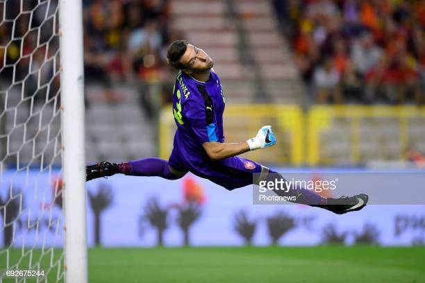 Jiri Pavlenka goalkeeper of Czech Republic in action during a FIFA international friendly match between Belgium and Czech Republic at the King...