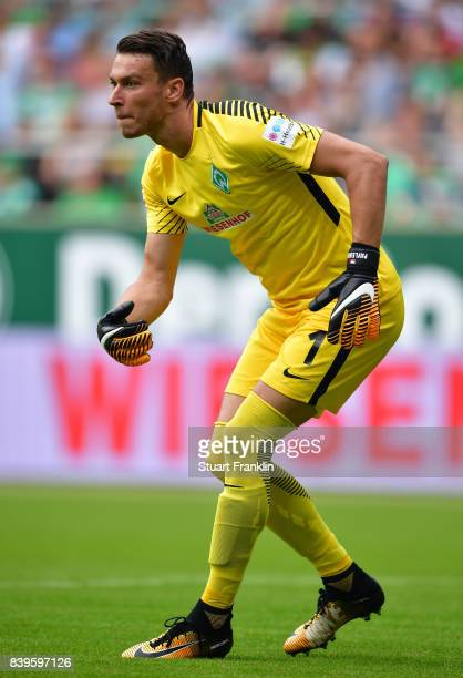 Jiri Pavlenka of Bremen in action during the Bundesliga match between SV Werder Bremen and FC Bayern Muenchen at Weserstadion on August 26 2017 in...