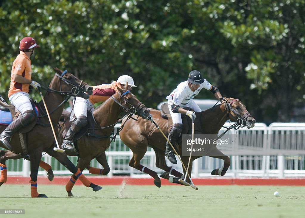 J.Novillo astrada of La Aguada in action during a polo match between La Aguada Las Monjitas and La Aguada as part of the 119th Argentine Open Polo Championship, at the Campo Argentino de Polo on November 25, 2012 in Buenos Aires, Argentina.