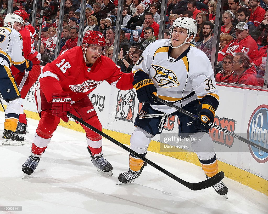 Joakim Andersson #18 of the Detroit Red Wings and Colin Wilson #33 of the Nashville Predators battle for position in the corner during an NHL game at Joe Louis Arena on November 19, 2013 in Detroit, Michigan.