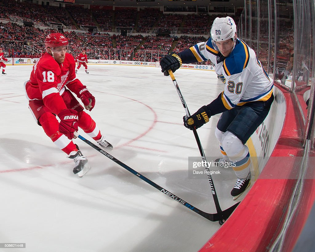 Joakim Andersson of the Detroit Red Wings battles in the corner for the puck with Alexander Steen of the St Louis Blues during an NHL game at Joe...