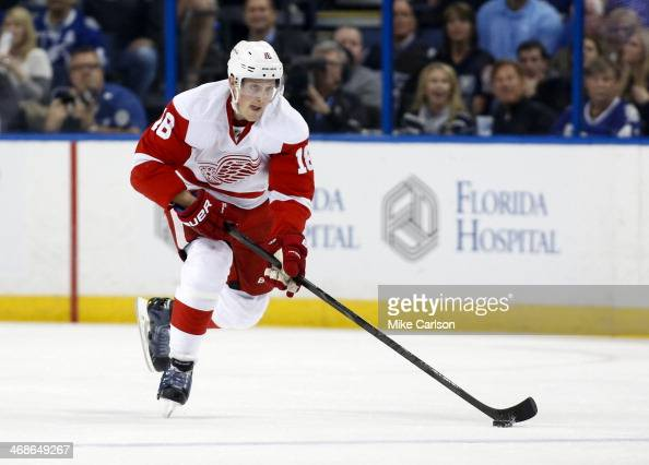 Joakim Andersson of the Detroit Red Wings brings the puck up against the Tampa Bay Lightning at the Tampa Bay Times Forum on February 8 2014 in Tampa...