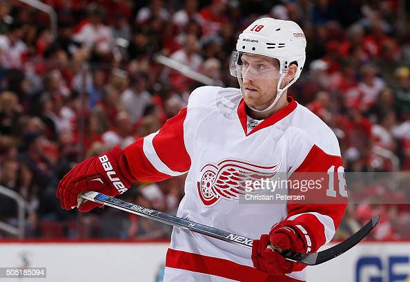 Joakim Andersson of the Detroit Red Wings during the NHL game against the Arizona Coyotes at Gila River Arena on January 14 2016 in Glendale Arizona...