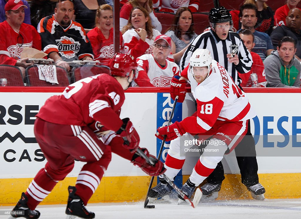 Joakim Andersson of the Detroit Red Wings skates with the puck during the NHL game against the Arizona Coyotes at Gila River Arena on February 7 2015...