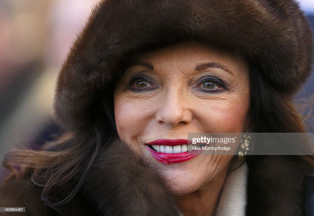 <a gi-track='captionPersonalityLinkClicked' href=/galleries/search?phrase=Joan+Collins&family=editorial&specificpeople=109065 ng-click='$event.stopPropagation()'>Joan Collins</a> attends the Hennessy Gold Cup Race Day at Newbury Racecourse on November 30, 2013 in Newbury, England.
