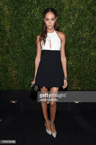 Joan Small attends the Chanel Dinner during the 2015 Tribeca Film Festival at Balthazar on April 20 2015 in New York City