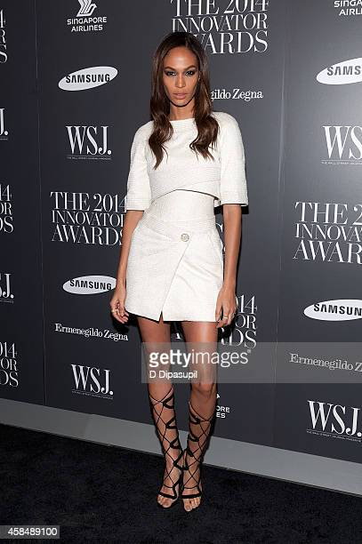 Joan Smalls attends WSJ Magazine's 'Innovator Of The Year' Awards at the Museum of Modern Art on November 5 2014 in New York City