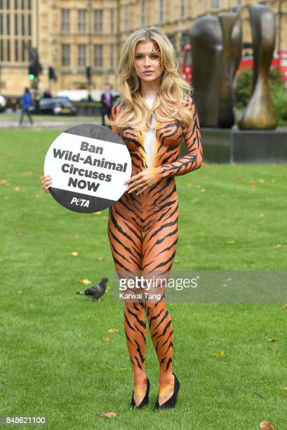 Joanna Krupa attends a PETA photocall painted as a tiger to campaign for a ban on Animal Circuses at Westminster on September 11 2017 in London...