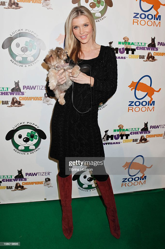 Joanna Krupa attends the Lucky Puppy Rescue and Retail grand opening on December 8, 2012 at Lucky Puppy Rescue in Studio City, California.