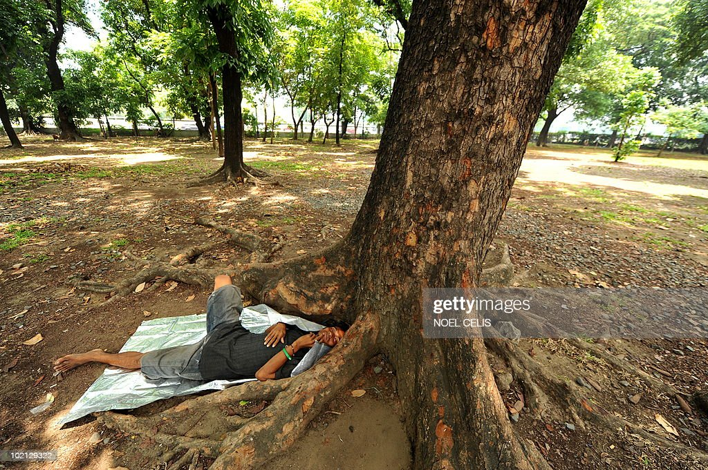 A jobless and homeless man sleeps under a tree at a park in Manila on June 16, 2010. The Philippines' jobless rate rose to a near four-year high of 8 percent in April despite the economy growing quickly, official data showed. The impoverished Philippines, with a total population of more than 90 million people, also has a huge pool of unskilled people with scant education who hold temporary jobs outside the official labour market.