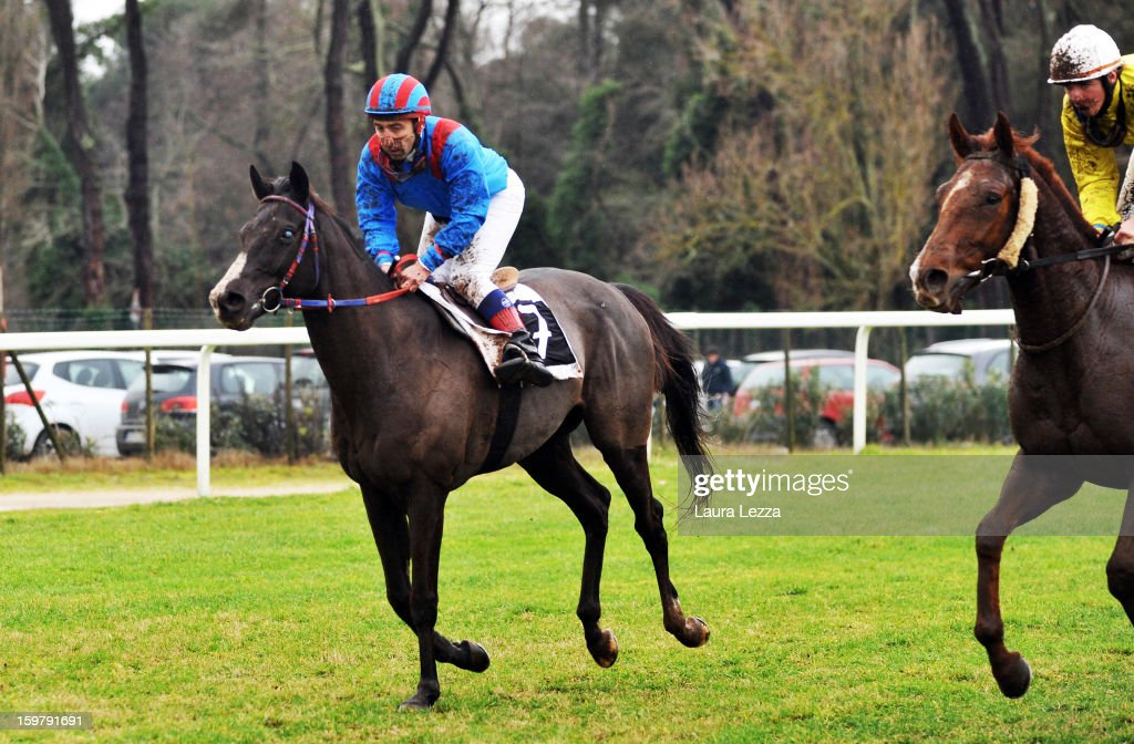 Jockey and owner Federico De Paola rides (1st R) his blind racehorse Laghat at Ippodromo San Rossore on January 20, 2013 near Pisa, Italy. Laghat is a ten-year-old Italian racehorse who has won 21 races despite being blind, after being born with a mycosis fungal infection in both eyes. Laghat is trained and owned by jockey Federico De Paola in San Rossore near Pisa and has its own facebook page with many followers. Laghat finished fourth at today's Premio Demet.