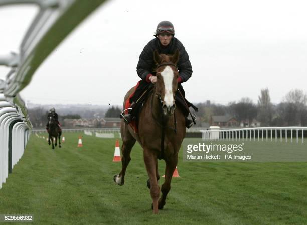 Jockey Carrie Ford rides Forrest Gunner