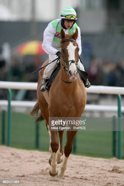 Jockey Chris Catlin on Waterside prior to the freebetscouk Best Racing Free Bets Claiming Stakes