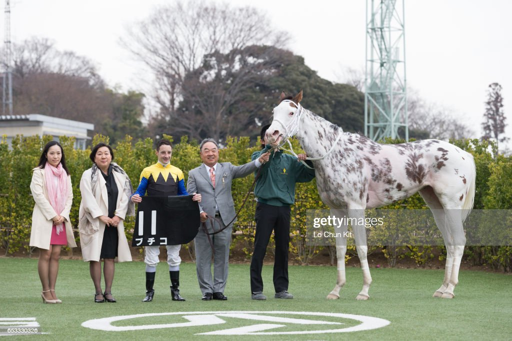 Jockey Christophe Lemaire and owner Makoto Kaneko celebrate after horse Buchiko wins the Race 10 Kazusa Stakes at Nakayama Racecourse on March 6, 2016 in Funabashi, Chiba, Japan. Buchiko is a striking-white filly with dark spots throughout her coat.