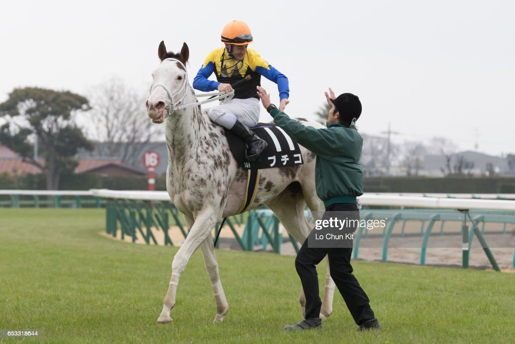 Jockey Christophe Lemaire riding Buchiko wins the Race 10 Kazusa Stakes at Nakayama Racecourse on March 6, 2016 in Funabashi, Chiba, Japan. Buchiko is a striking-white filly with dark spots throughout her coat.