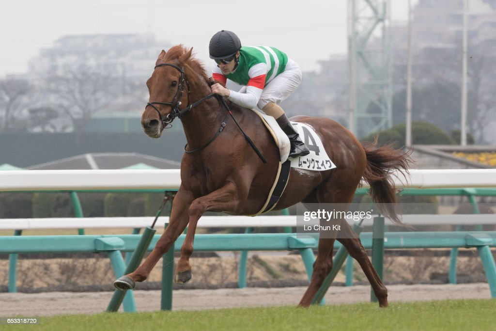 Horse Racing in Japan - Nakayama Racecourse