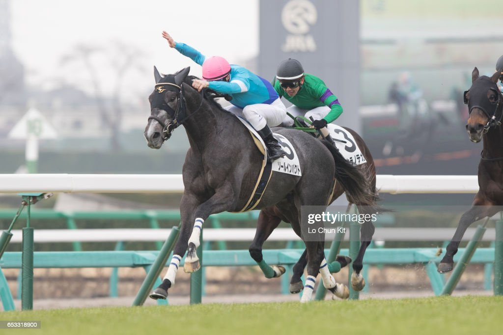 Jockey Christophe Lemaire riding Sole Impact wins the Race 8 at Nakayama Racecourse on March 6, 2016 in Funabashi, Chiba, Japan.