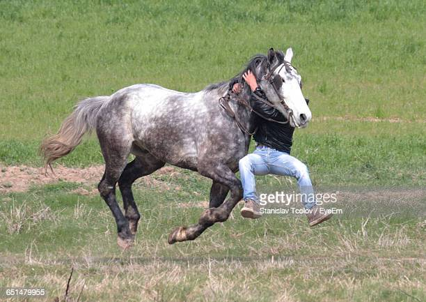 Jockey Climbing Horse Running On Grassy Field