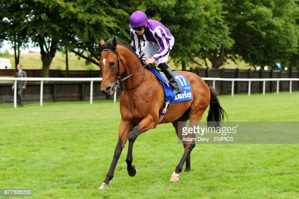 Jockey Colm O'Donoghue on Oracle prior to the Darley July Cup