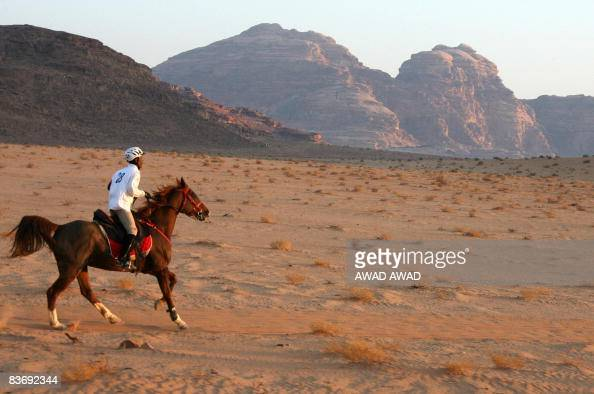 A jockey competes with his horse in the Wadi Rum International Endurance Ride in the Jordanian desert on November 14 2008 Dubai ruler Sheikh Mohammed...