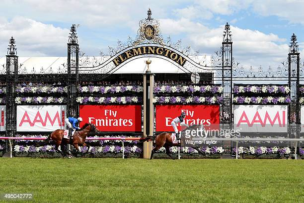 Jockey Craig Newitt riding Tarzino wins race 7 The AAMI Victorian Derby on Derby Day at Flemington Racecourse on October 31 2015 in Melbourne...