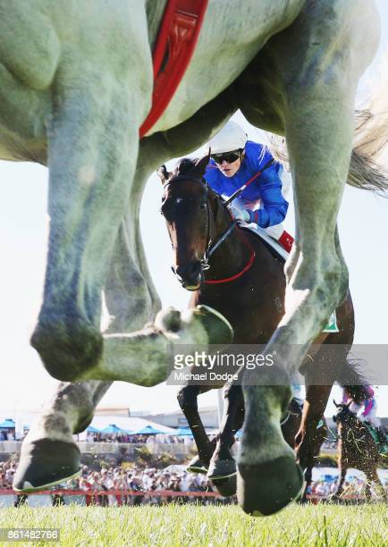 Jockey Craig Williams is seen riding Nozomi in race 8 the TAB Cranbourne Cup during Cranbourne Cup Day at on October 15 2017 in Cranbourne Australia